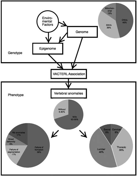 The genetic landscape and clinical implications of