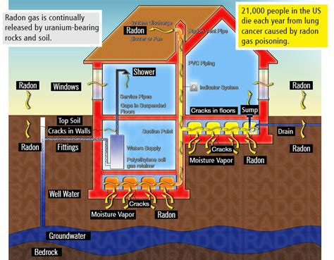 Best Radon Detector   Everything You Need to Know about