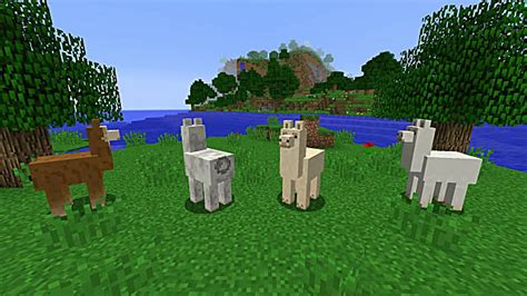How to Tame, Ride, and Breed Llama in Minecraft 1